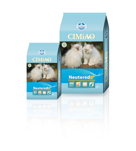 Cimiao Neutered Male