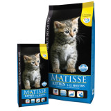 Matisse Kitten 1-12 Months