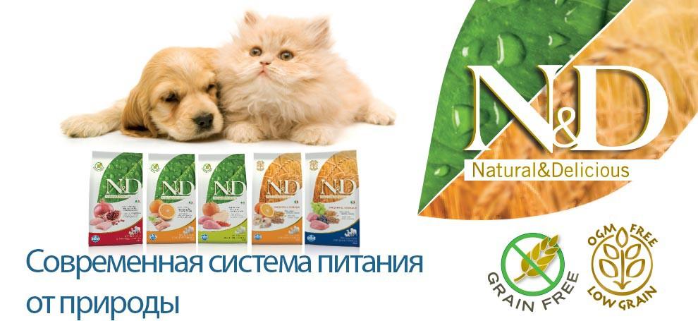 Сухие корма для собак | Farmina — happy pets