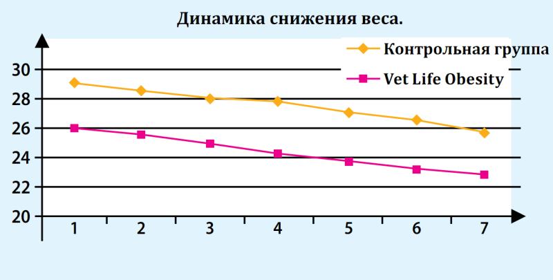 Динамика снижения веса