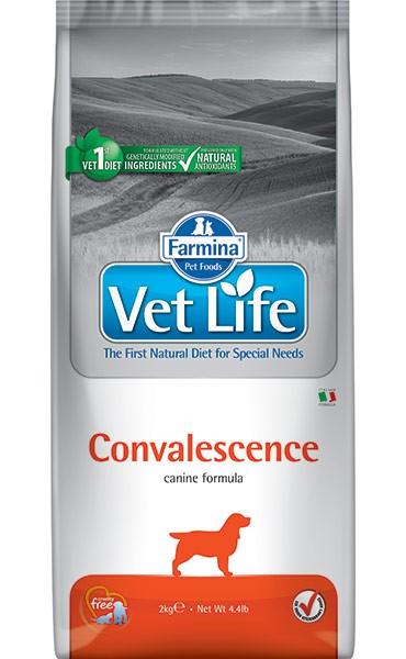 Vet Life Dog Convalescence